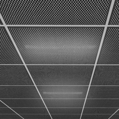 HECTOR_dettaglio_quadrato